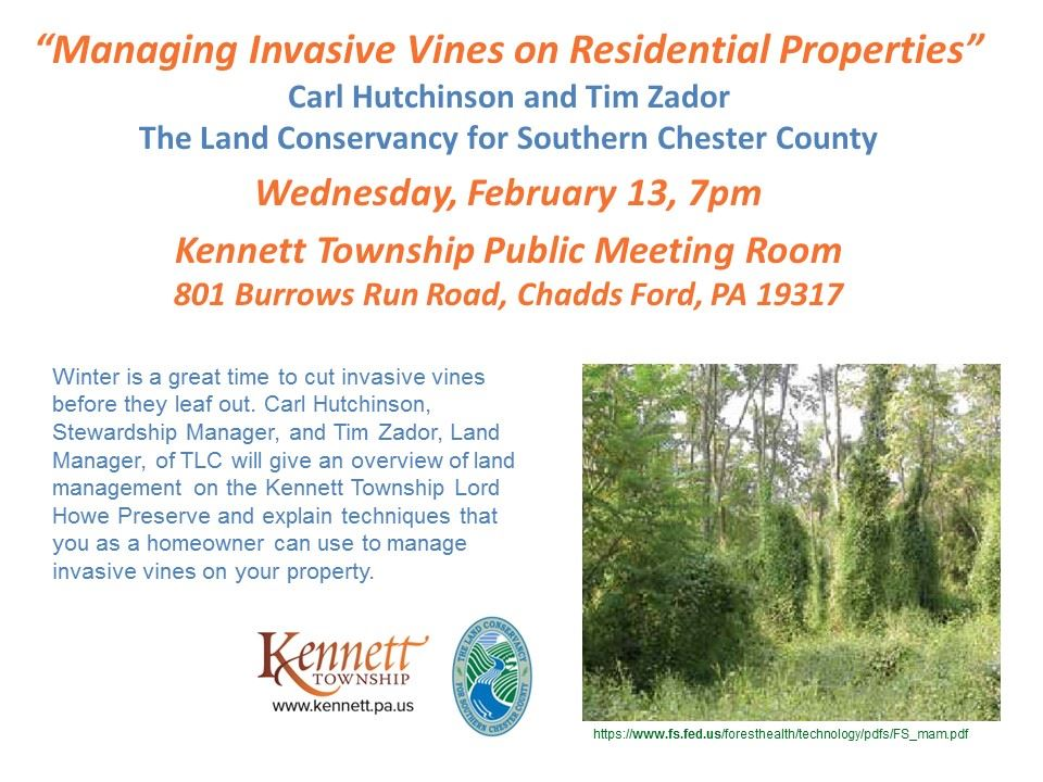 Invasive vine presentation flyer